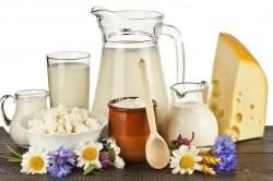 Польза кисломолочных продуктов при дисбактериозе