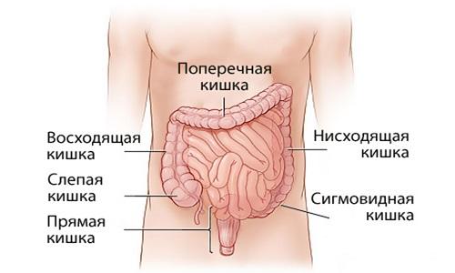 Проблема заболевания сигмовидной кишки